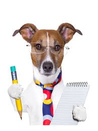 Dog with pencil and notebook