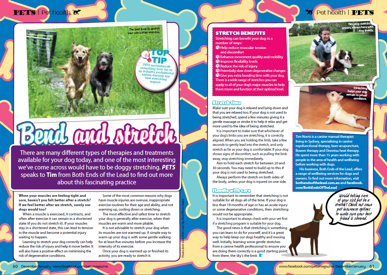 Pets Magazine, December 2014/January 2015 - Bend and Stretch